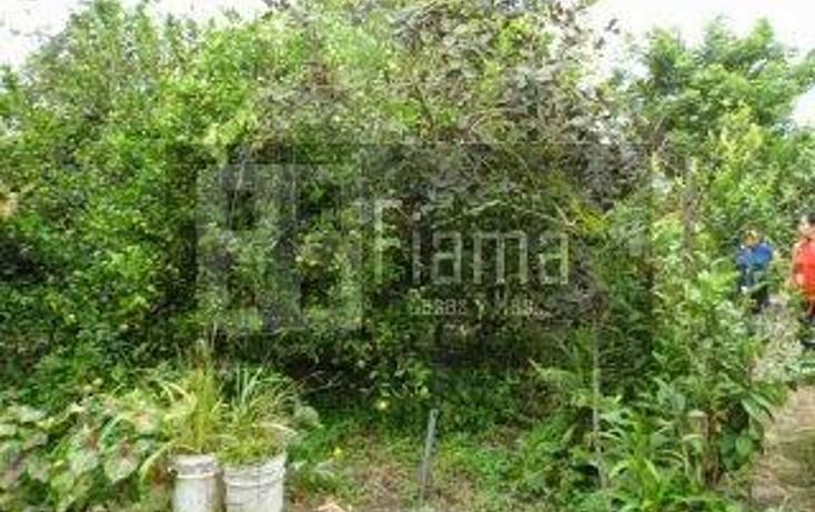 Foto de casa en venta en  , xalisco centro, xalisco, nayarit, 1247523 No. 07