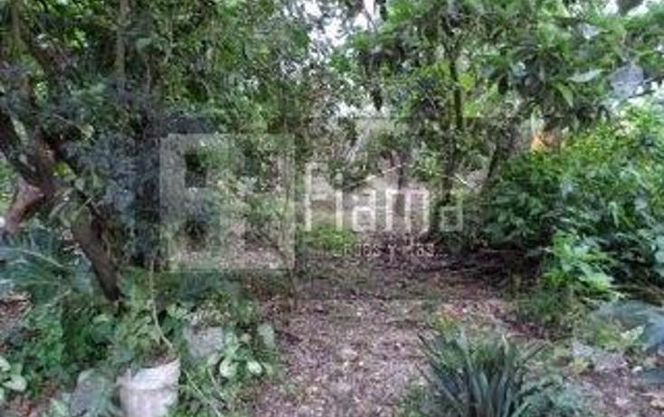 Foto de casa en venta en  , xalisco centro, xalisco, nayarit, 1247523 No. 11
