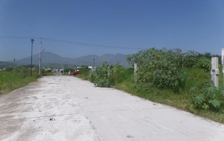 Foto de terreno habitacional en venta en  , xalisco centro, xalisco, nayarit, 1401945 No. 04