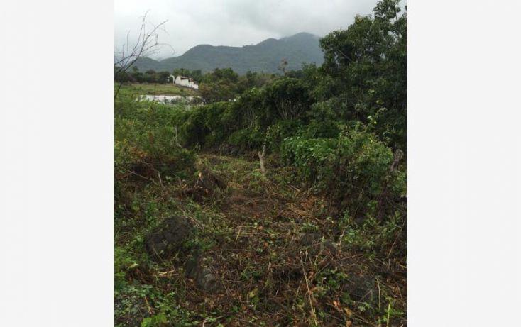 Foto de terreno habitacional en venta en xalmolonco, jalmolonga, malinalco, estado de méxico, 1369405 no 03