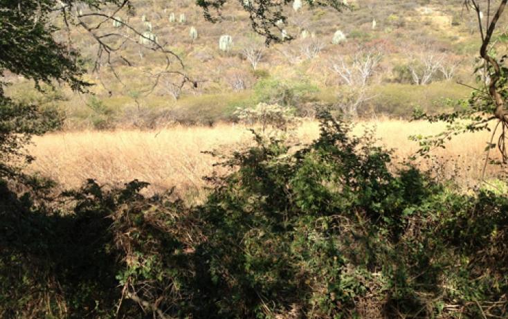 Foto de terreno habitacional en venta en xaloxtoc 87, xaloxtoc, ayala, morelos, 346744 no 02