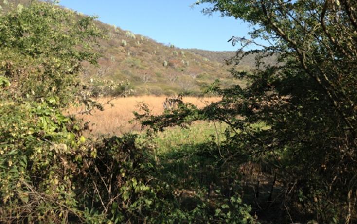 Foto de terreno habitacional en venta en xaloxtoc 87, xaloxtoc, ayala, morelos, 346744 no 03