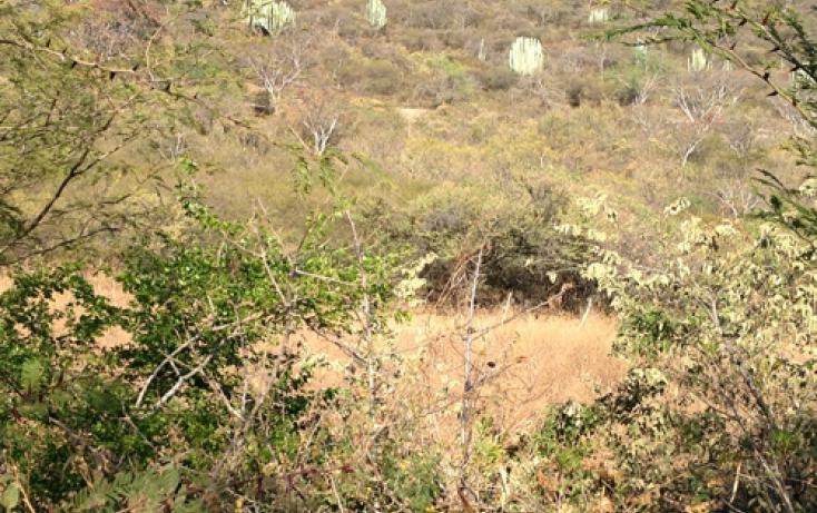 Foto de terreno habitacional en venta en xaloxtoc 87, xaloxtoc, ayala, morelos, 346744 no 05