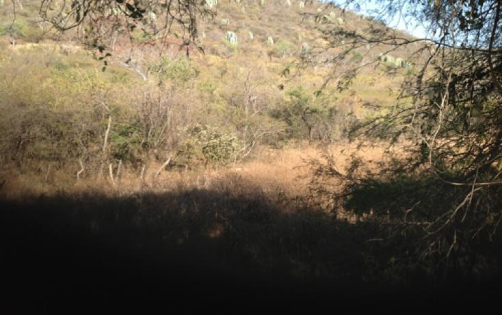 Foto de terreno habitacional en venta en xaloxtoc 87, xaloxtoc, ayala, morelos, 346744 no 06
