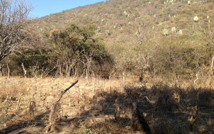 Foto de terreno habitacional en venta en xaloxtoc 87, xaloxtoc, ayala, morelos, 346744 no 07