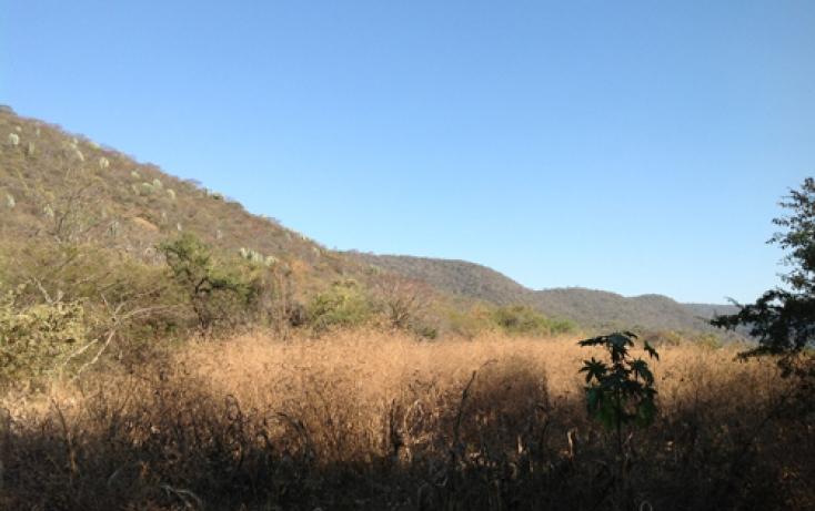 Foto de terreno habitacional en venta en xaloxtoc 87, xaloxtoc, ayala, morelos, 346744 no 08