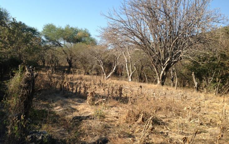 Foto de terreno habitacional en venta en xaloxtoc 87, xaloxtoc, ayala, morelos, 346744 no 10