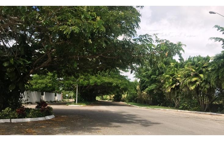 Foto de terreno habitacional en venta en  , xcanat?n, m?rida, yucat?n, 1188087 No. 02