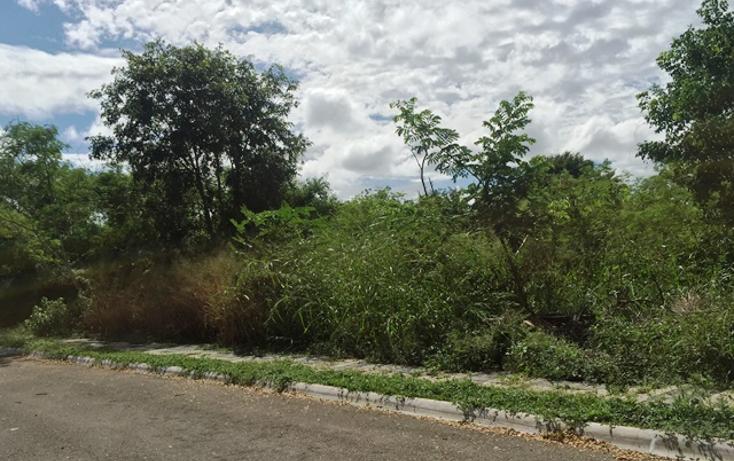 Foto de terreno habitacional en venta en  , xcanat?n, m?rida, yucat?n, 1189583 No. 01