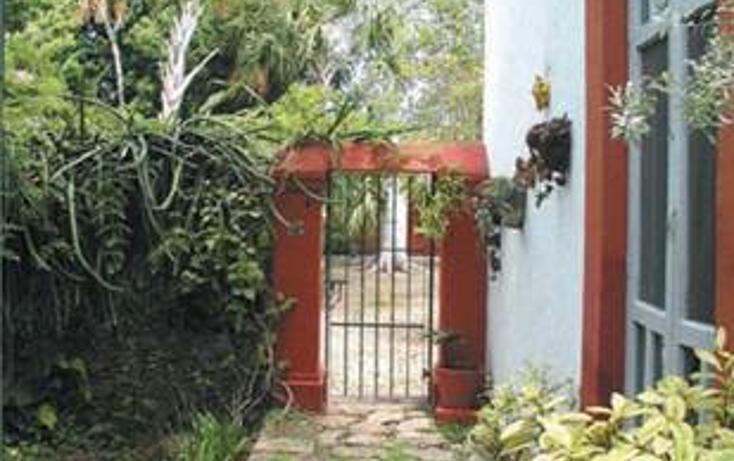 Foto de rancho en venta en  , xcumpich, mérida, yucatán, 2632900 No. 05