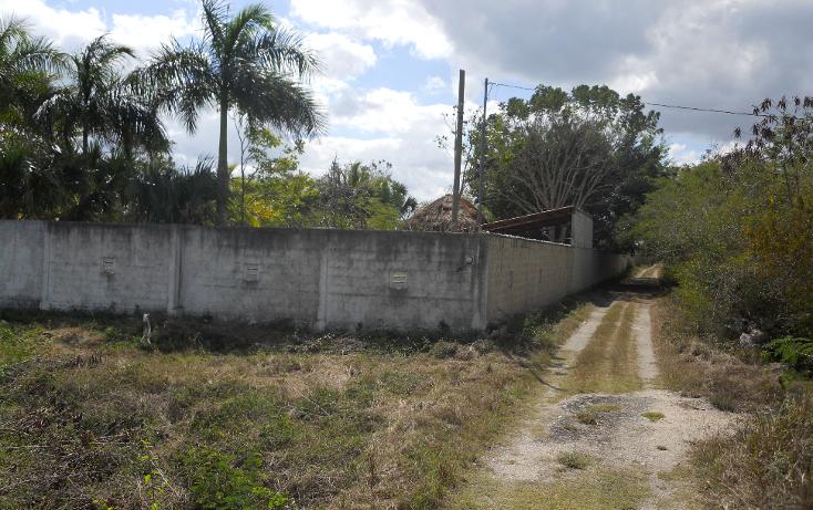 Foto de casa en renta en  , xcunyá, mérida, yucatán, 1252183 No. 03