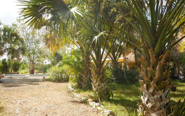Foto de casa en renta en  , xcunyá, mérida, yucatán, 1252183 No. 06