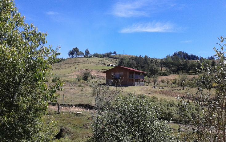 Foto de rancho en venta en  , xico, xico, veracruz de ignacio de la llave, 1055751 No. 05