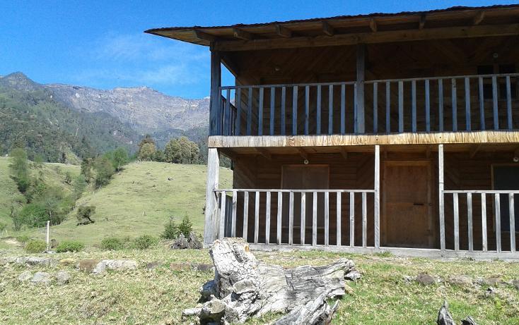 Foto de rancho en venta en  , xico, xico, veracruz de ignacio de la llave, 1055751 No. 14