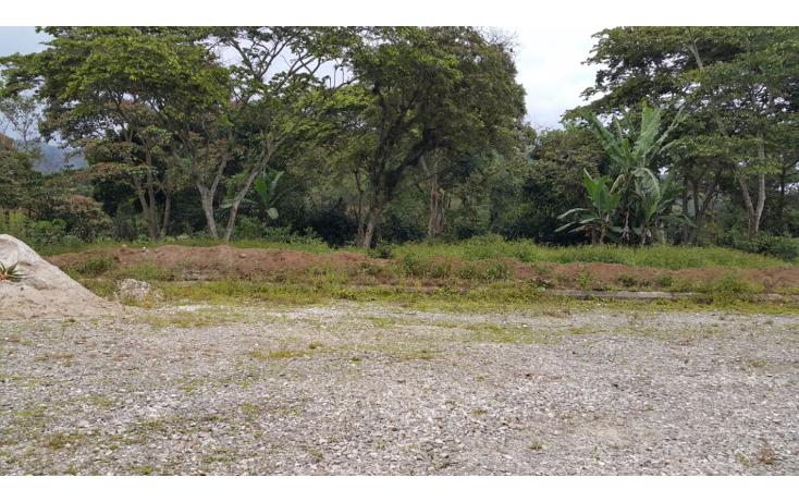 Foto de terreno habitacional en venta en  , xico, xico, veracruz de ignacio de la llave, 1100261 No. 02