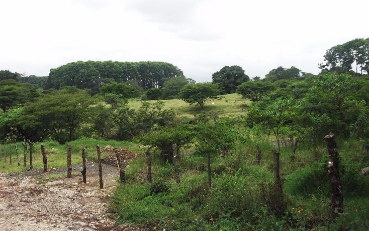 Foto de terreno habitacional en venta en  , xico, xico, veracruz de ignacio de la llave, 1428647 No. 06