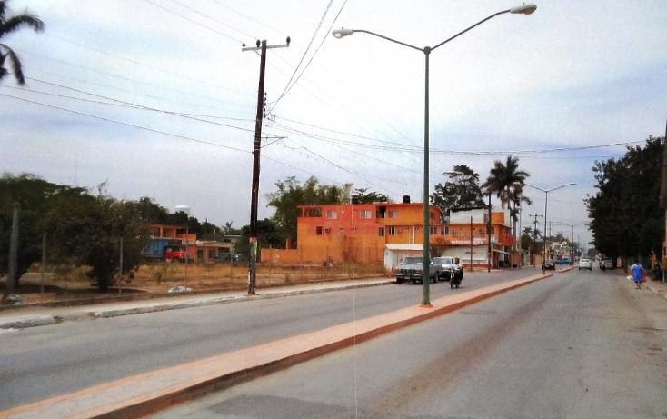 Foto de terreno comercial en renta en  , xicotencatl centro, xicoténcatl, tamaulipas, 1289937 No. 01