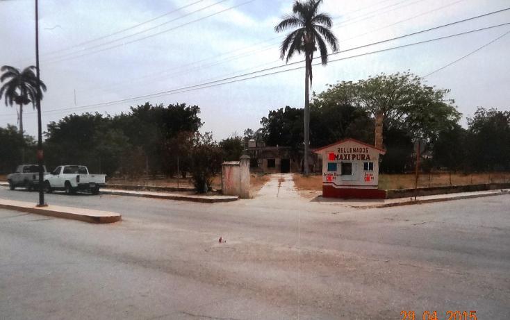 Foto de terreno comercial en renta en  , xicotencatl centro, xicoténcatl, tamaulipas, 1289937 No. 04