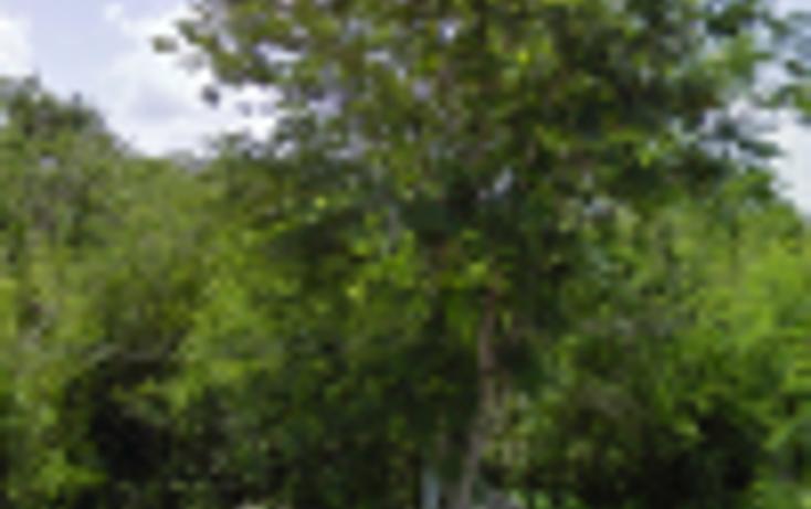 Foto de terreno habitacional en venta en  , xmatkuil, mérida, yucatán, 1113047 No. 02