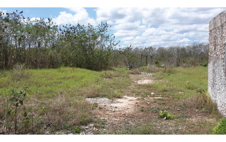 Foto de terreno habitacional en venta en  , xmatkuil, mérida, yucatán, 825025 No. 04