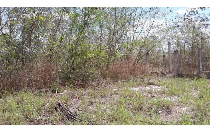 Foto de terreno habitacional en venta en  , xmatkuil, mérida, yucatán, 825025 No. 11