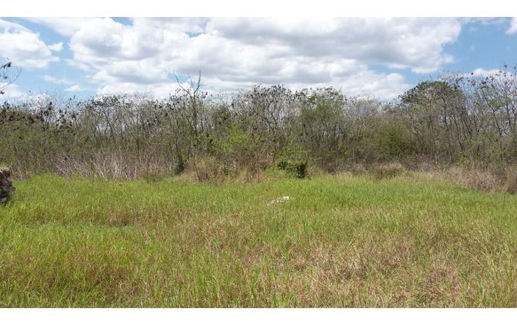 Foto de terreno habitacional en venta en  , xmatkuil, mérida, yucatán, 825025 No. 13