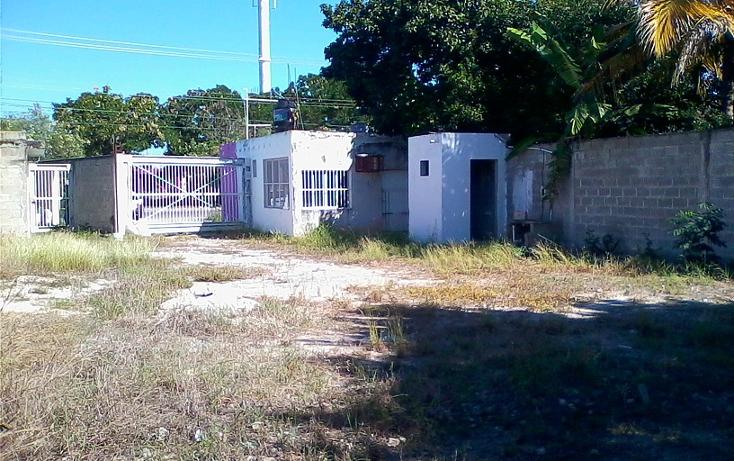 Foto de terreno comercial en venta en  , xoclan susula, mérida, yucatán, 1118053 No. 04