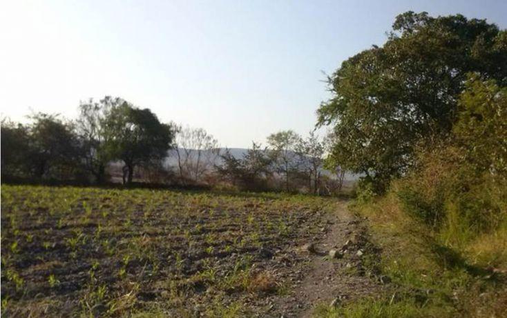Foto de terreno habitacional en venta en, xoxocotla, puente de ixtla, morelos, 1637515 no 01