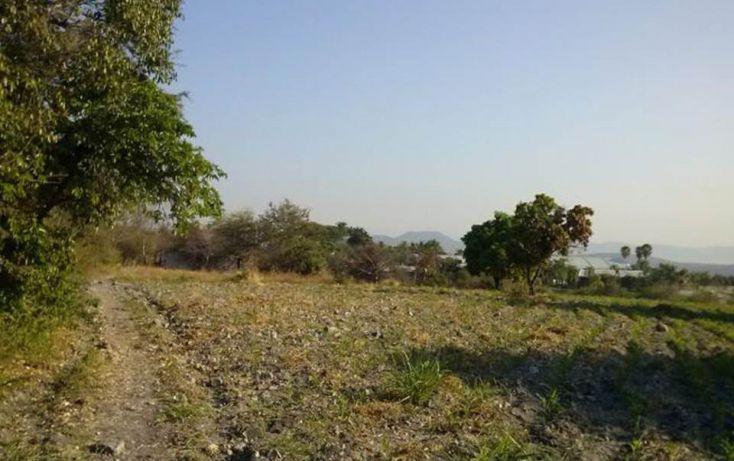 Foto de terreno habitacional en venta en, xoxocotla, puente de ixtla, morelos, 1637515 no 02