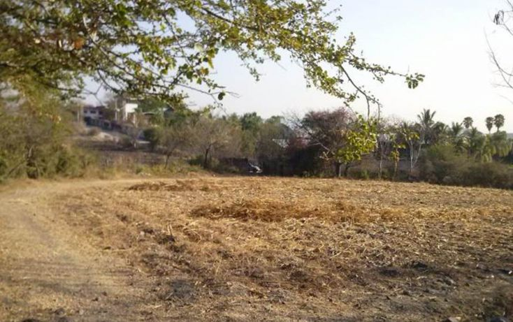 Foto de terreno habitacional en venta en, xoxocotla, puente de ixtla, morelos, 1637515 no 08