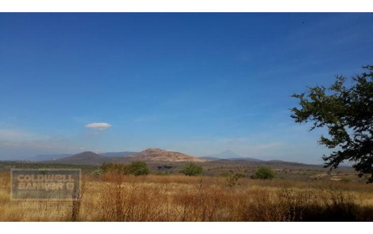 Foto de terreno comercial en venta en  , xoxocotla, puente de ixtla, morelos, 1846082 No. 01