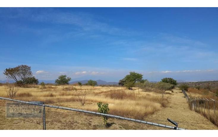 Foto de terreno comercial en venta en  , xoxocotla, puente de ixtla, morelos, 1846082 No. 02