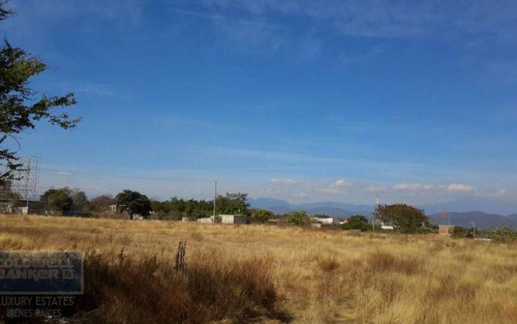 Foto de terreno habitacional en venta en, xoxocotla, puente de ixtla, morelos, 1846082 no 03