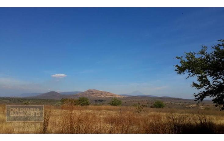 Foto de terreno comercial en venta en  , xoxocotla, puente de ixtla, morelos, 1846082 No. 04