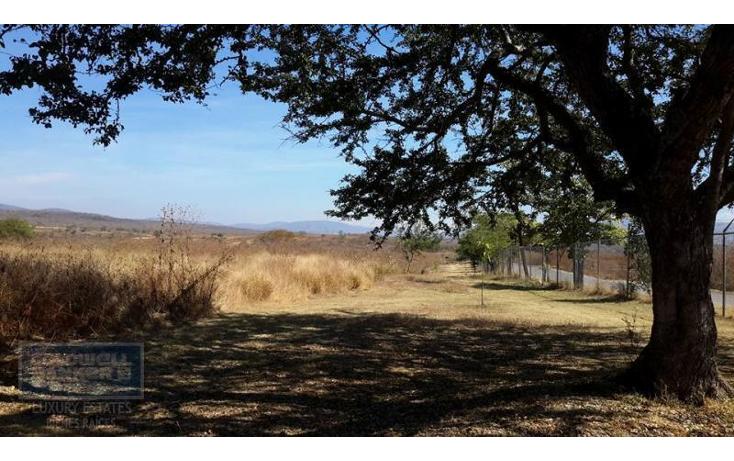 Foto de terreno comercial en venta en  , xoxocotla, puente de ixtla, morelos, 1846082 No. 05