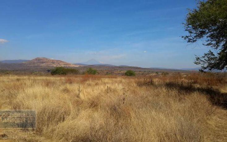 Foto de terreno habitacional en venta en, xoxocotla, puente de ixtla, morelos, 1846082 no 06