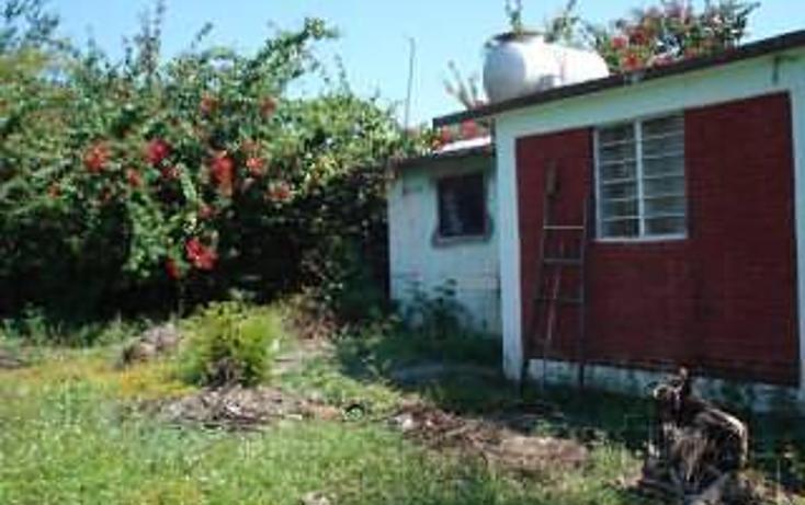 Foto de terreno habitacional en venta en  , xoxocotla, puente de ixtla, morelos, 1858672 No. 05