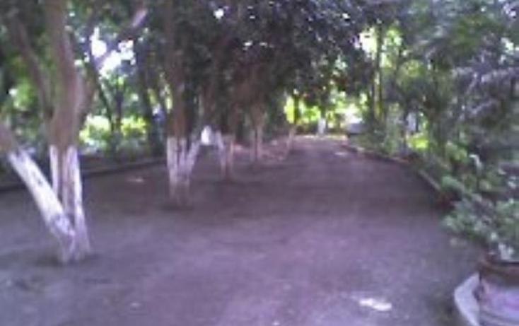Foto de rancho en venta en  , xoxocotla, puente de ixtla, morelos, 370378 No. 18