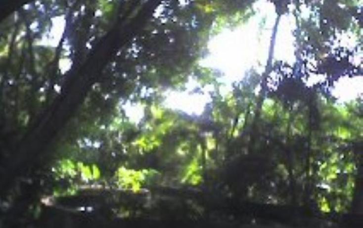 Foto de rancho en venta en  , xoxocotla, puente de ixtla, morelos, 370378 No. 26