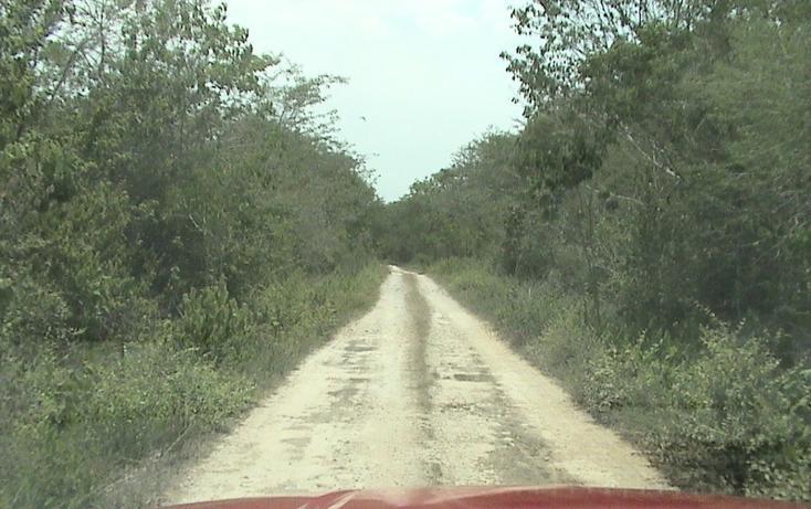 Foto de terreno habitacional en venta en  , xtohil, chankom, yucatán, 1459729 No. 13