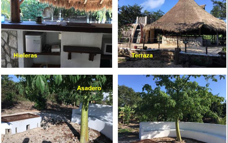 Foto de terreno habitacional en venta en, xtut, temozón, yucatán, 1626445 no 04