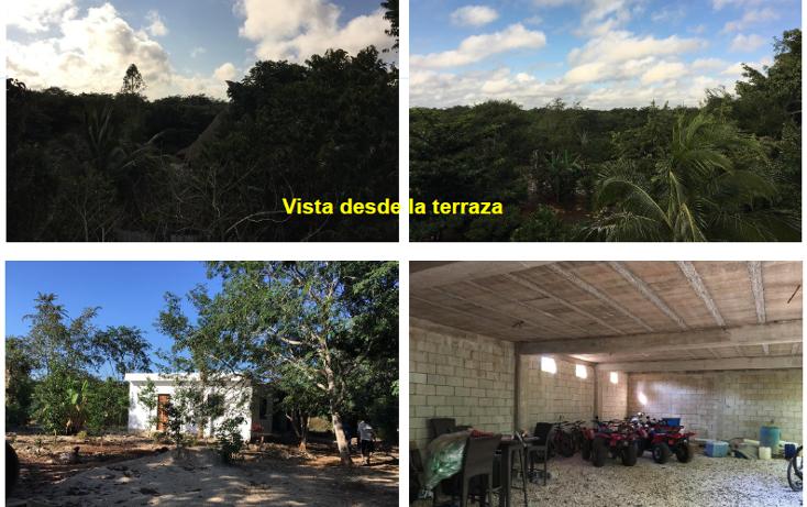 Foto de terreno habitacional en venta en  , xtut, temozón, yucatán, 1626445 No. 07