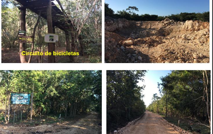 Foto de terreno habitacional en venta en  , xtut, temozón, yucatán, 1626445 No. 13
