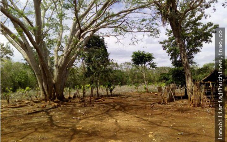 Foto de terreno habitacional en venta en, xul, oxkutzcab, yucatán, 2018911 no 02