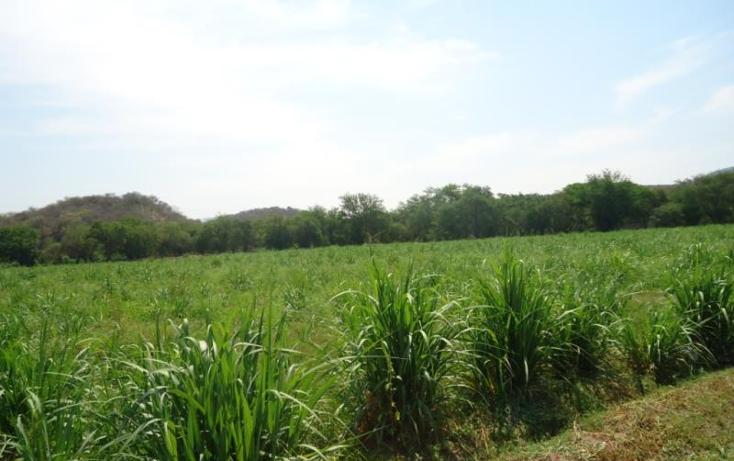 Foto de terreno habitacional en venta en  xx, tehuixtla, jojutla, morelos, 1816622 No. 02