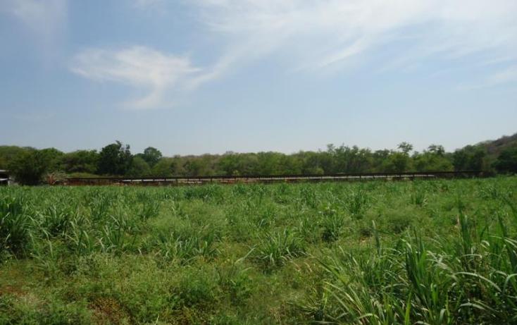 Foto de terreno habitacional en venta en  xx, tehuixtla, jojutla, morelos, 1816622 No. 03