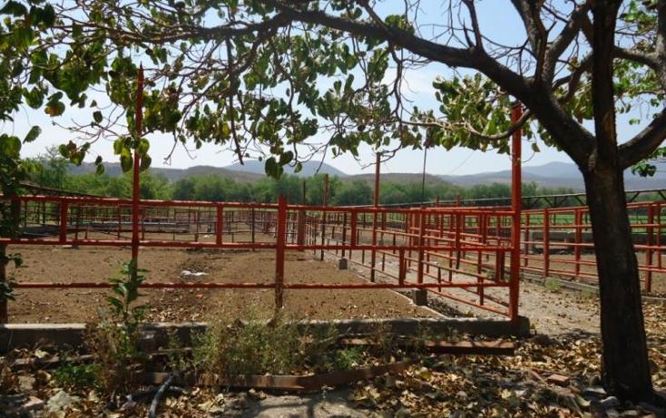 Foto de terreno habitacional en venta en  xx, tehuixtla, jojutla, morelos, 1816622 No. 05