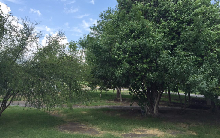 Foto de terreno habitacional en venta en  , y, parras, coahuila de zaragoza, 1774836 No. 01
