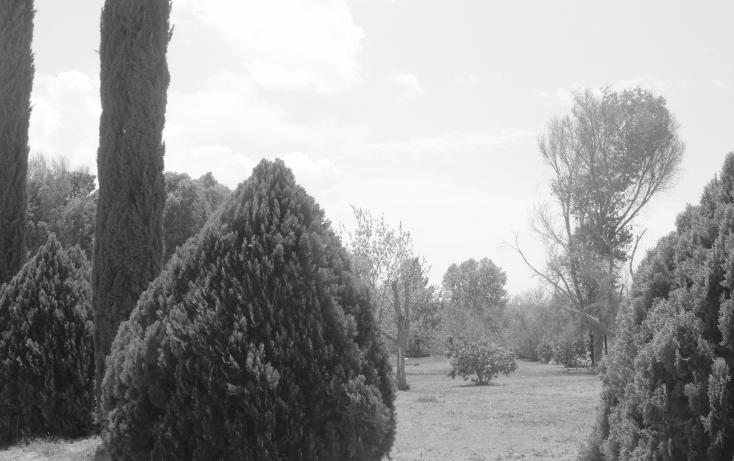 Foto de terreno habitacional en venta en  , y, parras, coahuila de zaragoza, 1775220 No. 11