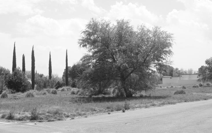Foto de terreno habitacional en venta en  , y, parras, coahuila de zaragoza, 1775710 No. 07